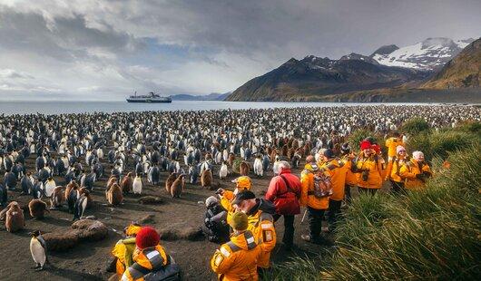 croisiere antarctique avec quark expeditions